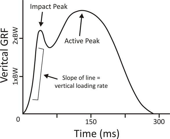 vertical-impact-loading-rate-in-running-linkages-to-running-injury-risk